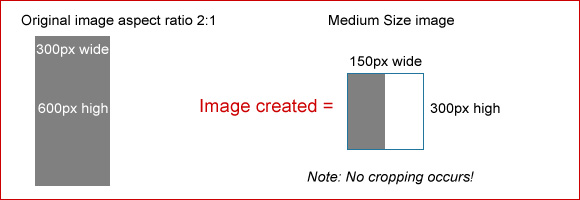 Medium Size image example 2