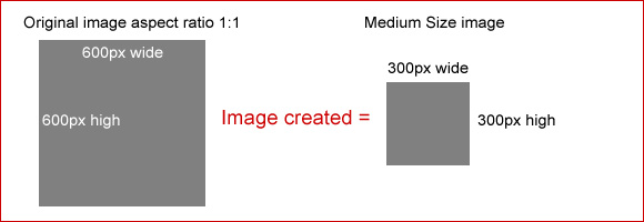 Medium size image example 1